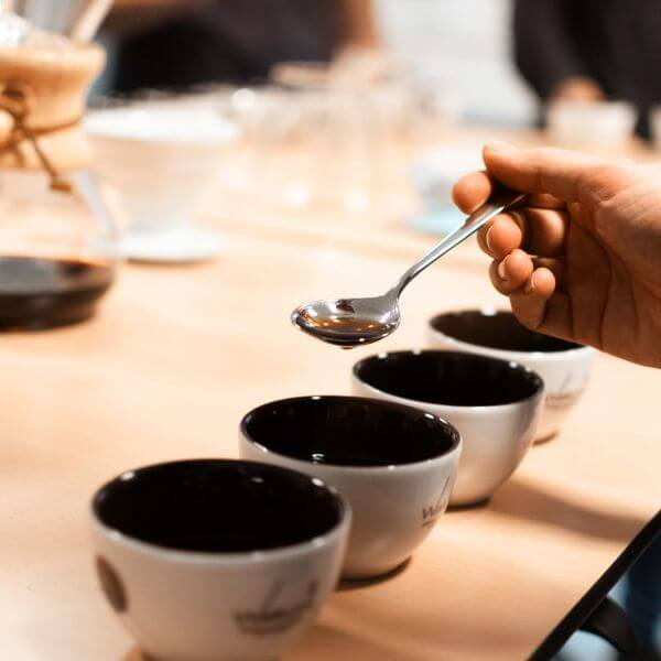 Kaffeeverkostung - wie ein Profi Online Seminar