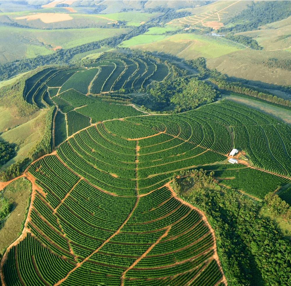 Brasil-Fazenda-Santa-Luzia3F9VG4V2rKl1x